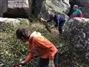 Climbers and National Trust work together to re-vitalise Brimham Rocks