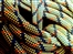 Rope recycling: volunteer needed for climbing recycling project